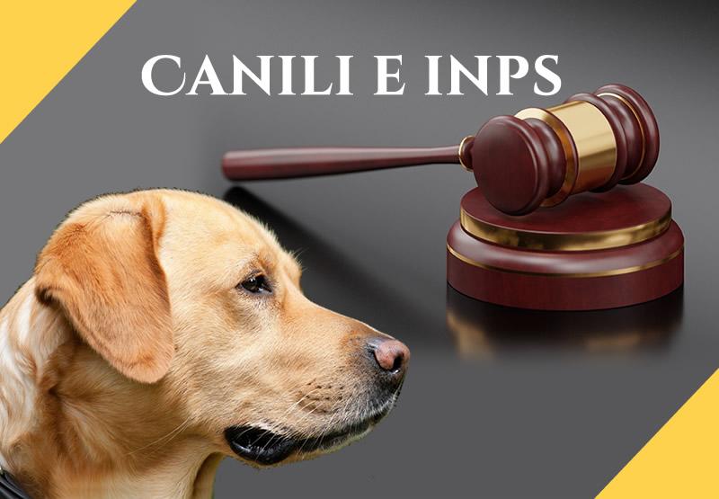 sentenza condanna INPS